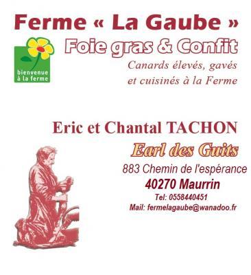 Logo lagaube tachon guits 2 3655354